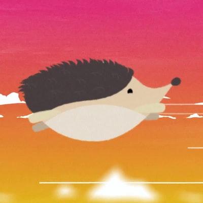 Henry, the flying Hedgehog.